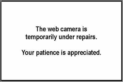 Alpine Junction East View